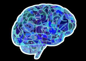 brain-951874_1920