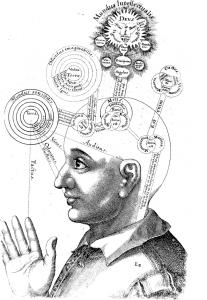 Kognition 2