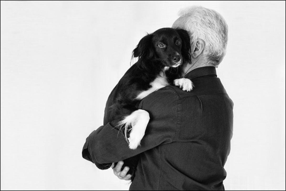 Tierische Therapeuten