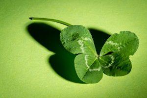Abb. 1: Vierblättriges Kleeblatt als Glückssymbol